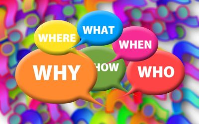 Legal website design questions